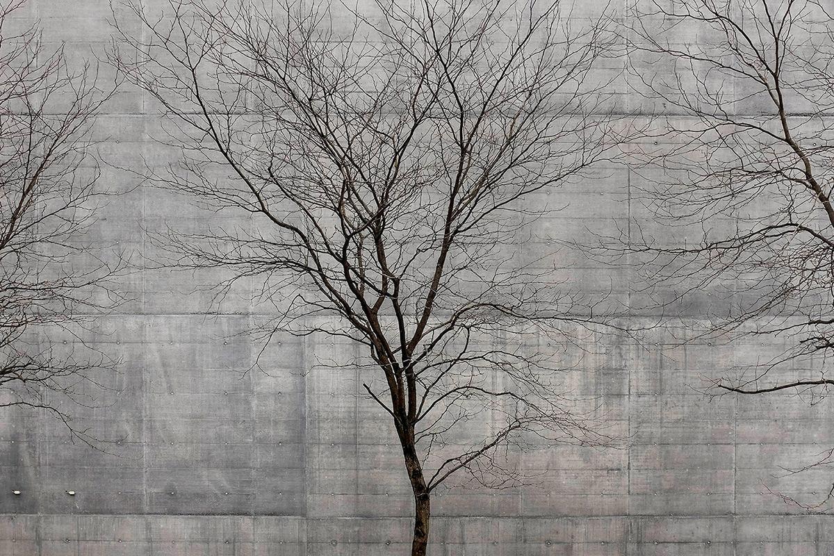 02-Nature&Society_02